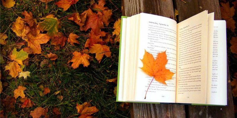 Вересень на Черкащині розпочнеться зі спеки до +34ºС