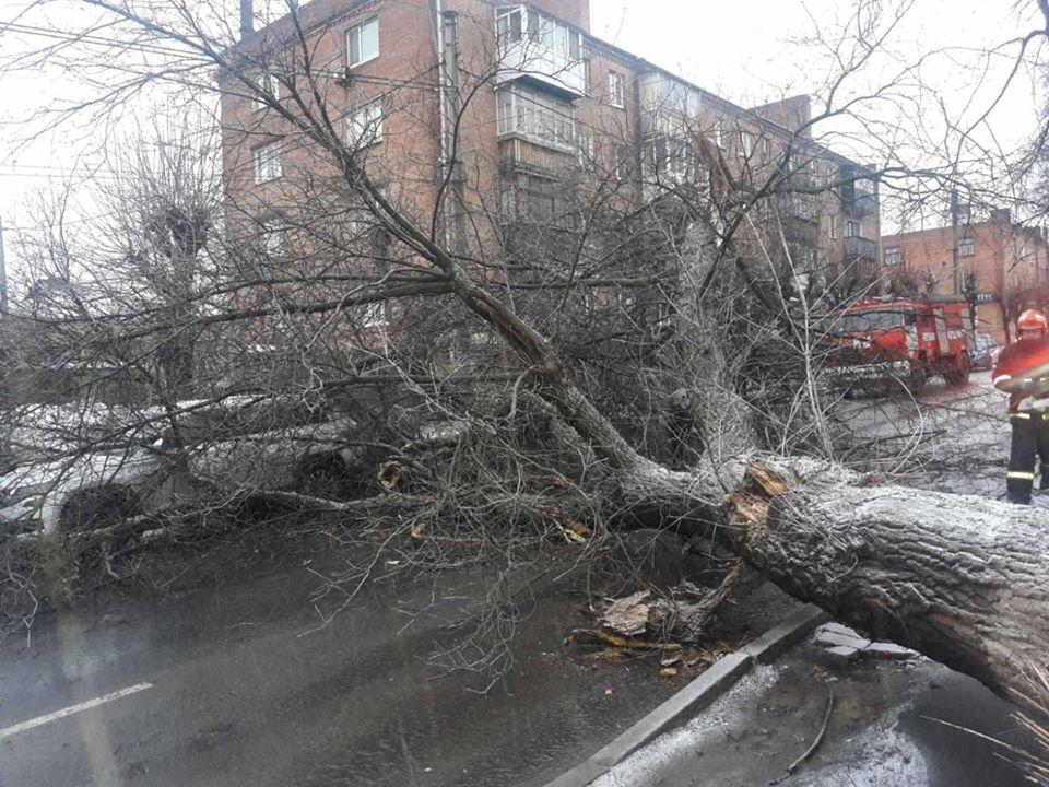 Повалені дерева, аварійні ситуації на дорозі та вимкнення світла: наслідки негоди на Черкащині