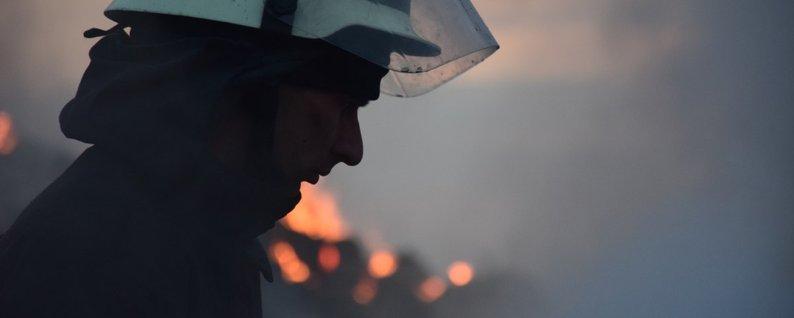 Через високу пожежну небезпеку в області заборонили відвідувати ліси