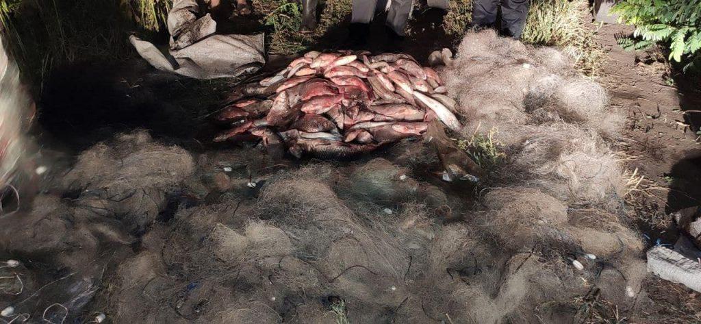 Незаконний улов на 72 тисячі. В області затримали рибних браконьєрів (ФОТО)