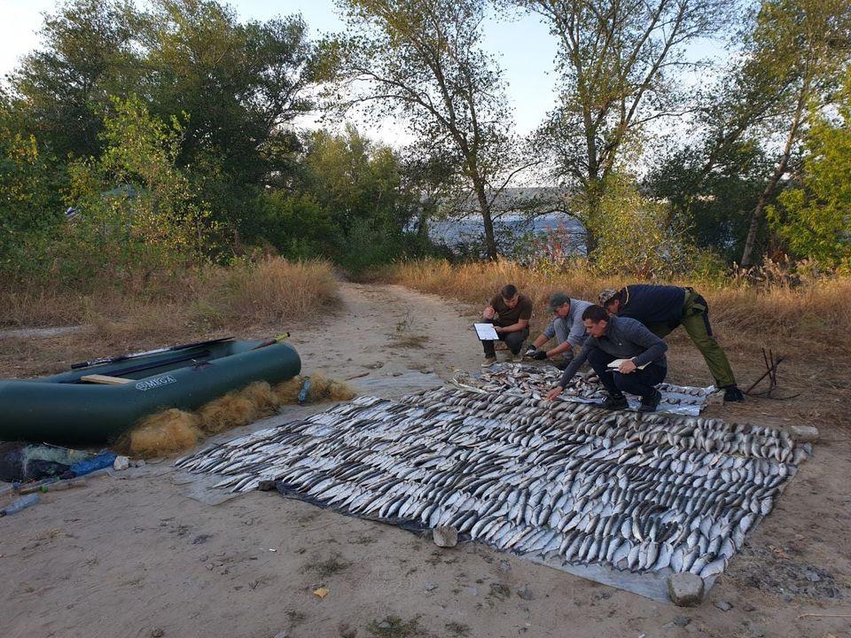 На Черкащині спіймали браконьєрів, що нарибалили на понад 261 тисячу грн