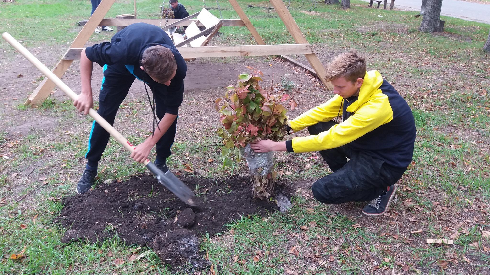 У селі В'язівок школярі з лісниками облаштували сквер