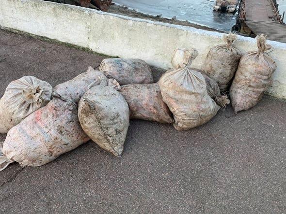 За рік браконьєри на Черкащині завдали збитків рибному господарству на понад 5 млн грн