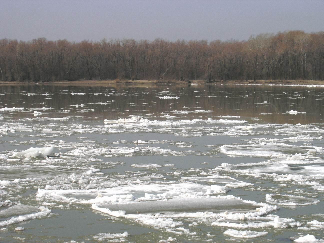 На річках Черкащини сьомий рік поспіль зберігається маловоддя