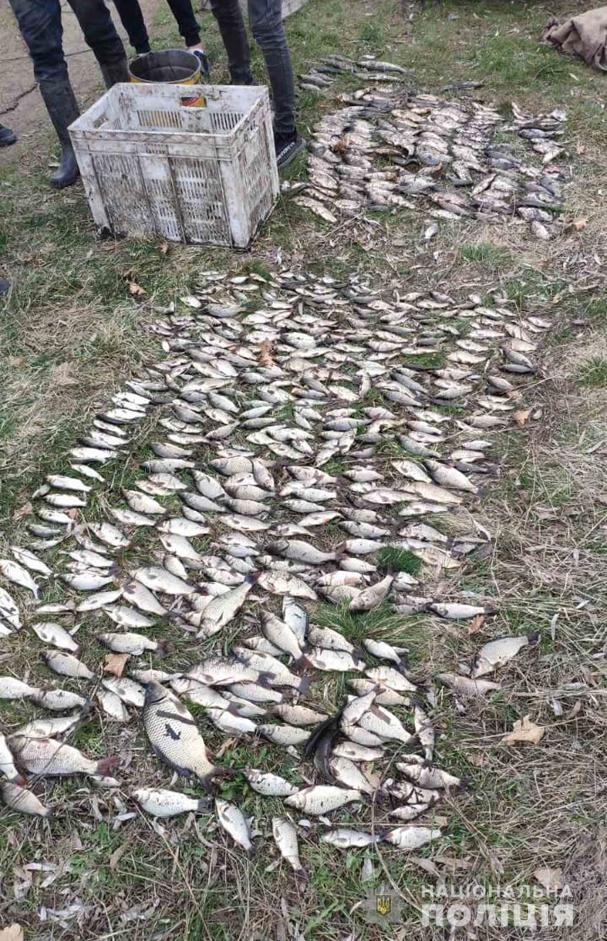 Двоє уманчан наловили риби майже на сто тисяч гривень