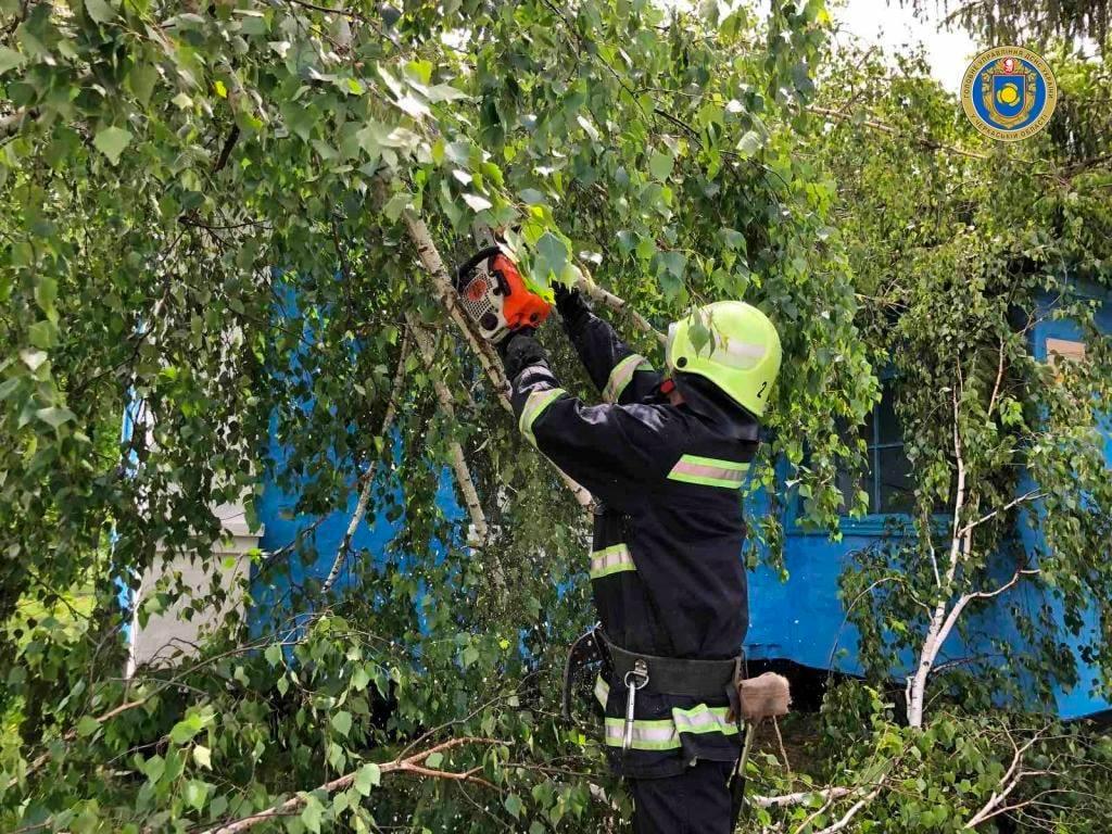 На Черкащині через негоду дерево впало на поштове відділення (ФОТО)