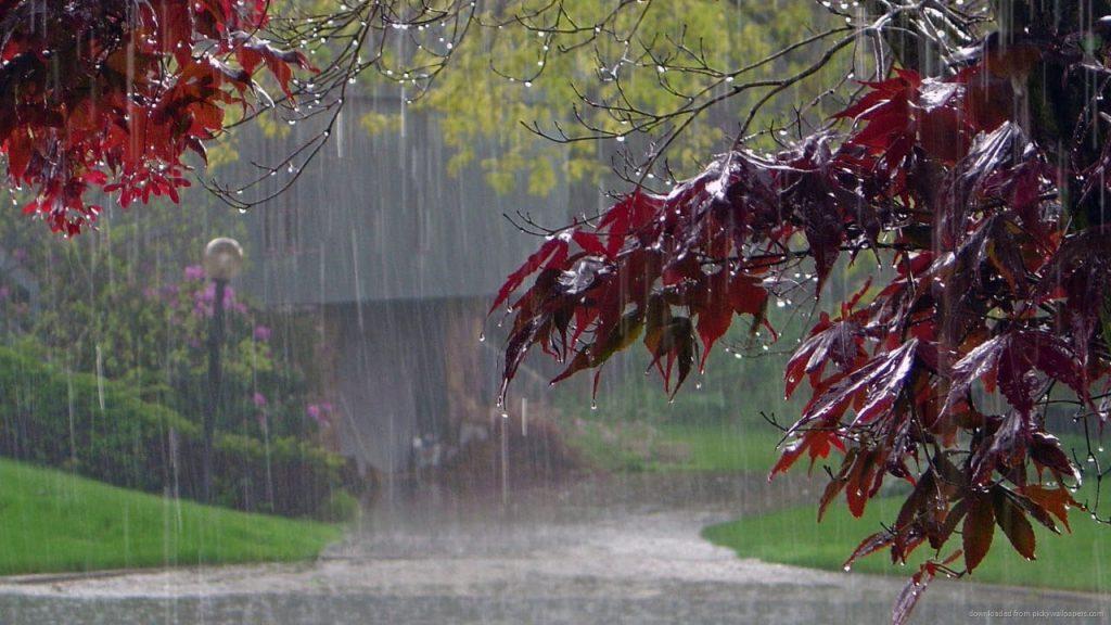 Осінні дощі й прохолода все ближче підступають до Черкащини